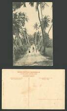 Ceylon Old Postcard A Bye Path between the Cocoanut Palms Colombo Palm Trees Men