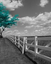 Black White Teal Wall Art, Teal Tree Landscape Modern Home Decor Matted Picture