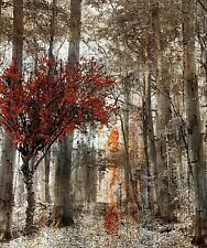 Rustic Brown Red Wall Art, Forest Path Tree Home Decor Matted Picture