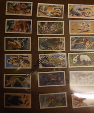 Select from a number of Brooke Bond ASIAN WILD LIFE Tea Cards