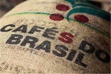 BRAZIL SANTOS #1 Arabica WHOLE Coffee Beans American Origin Cerrado Region