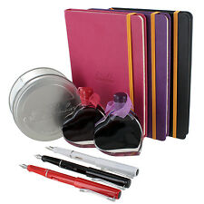 "Jinhao ""Write Your Love Story"" Fountain Pen, Webnotebook, & Ink Bottle Set"