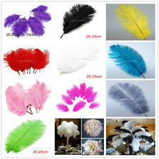 10pcs/Lot Natural Ostrich Feathers for Embelishment Craft DIY 8-10inch /20-25 cm