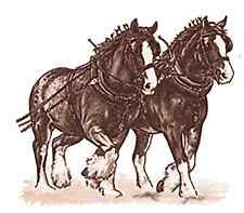 Shire Horse Team Select-A-Size Waterslide Ceramic Decals Ox