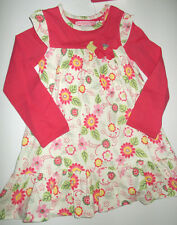 Floral float dress pink green applique girls 4 5 NWT Baby Nay