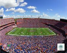 Ben Hill Griffin Stadium Florida Gators NCAA Football Photo SP062 (Select Size)