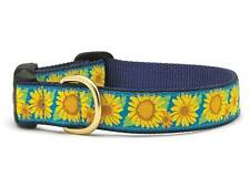 ANY SIZE - UP COUNTRY - MADE IN USA - DESIGNER DOG COLLAR - BRIGHT SUNFLOWER