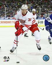Anthony Mantha Detroit Red Wings 2016-2017 NHL Action Photo TS055 (Select Size)