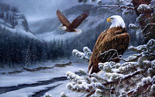 Home Art wall decor snow Eagle Animal oil painting picture Printed on Canvas 132