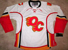 QUAD CITY FLAMES AHL MINOR LEAGUE HOCKEY JERSEY ADULT SMALL OR MEDIUM NEW!