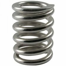 "Bigsby 1"" Tension Spring, Stainless Steel"
