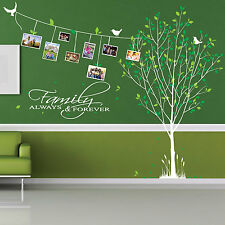 Family Tree Bird Photo Frame Art Wall Quotes Wall Stickers Wall Decals