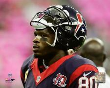 Andre Johnson Houston Texans NFL Action Photo UP115 (Select Size)