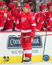 Anthony Mantha Detroit Red Wings 2017-2018 NHL Action Photo UQ162 (Select Size)