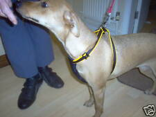 EASY WALK  DOG HARNESSES /PADDED  S M L  +free CAR CON
