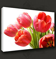 RED TULIPS BUNCH FLORAL CANVAS PRINT POP ART MANY SIZES TO CHOOSE FROM