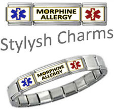 MORPHINE ALLERGY MEDICAL ID 9mm Italian Charm SILVER TONE SHINY Starter Bracelet