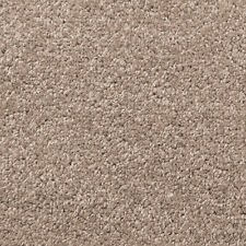 Exton Grey Quality Twist Carpet 4m Wide Lounge Bedroom Stairs Cheap Any Size