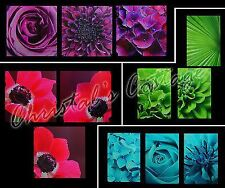 Set of 3 Quality Wooden Frame Canvas Wall Art Decoration Picture 30cm Flowers
