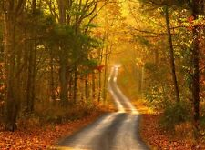 Fall time Road scenery scenery Home room decor poster PERSONALIZED FREE
