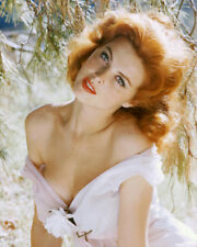 TINA LOUISE SEXY BUSTY COLOR PHOTO OR POSTER