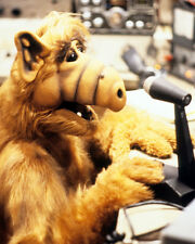 ALF AT MICROPHONE TV SHOW PHOTO OR POSTER