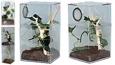 Tarantula,Praying Mantis,Stick Insect,Leaf Insect Mini Arboreal Vivarium