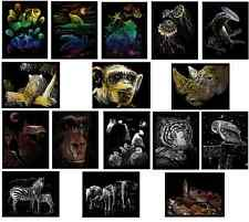 CHOICE OF 16  A4 ENGRAVING ART SCRAPER FOIL KITS NEW 2014/15 WILD ANIMAL DESIGNS