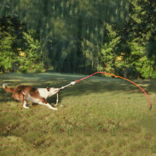 Tether Tug Interactive Outdoor Dog Toy
