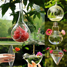 Hanging Transparent Crystal Glass Plant Flowers Vase Garden Pot Party Wedding