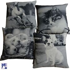 Pillow Case with Animal Motif Magma Decorative Cushion Horse, Dog, Cat