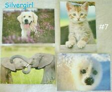 Animal Blank Note Cards w Envelopes Humane Society, IFAW