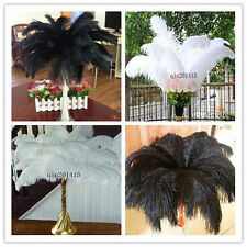Wholesale 10-100pcs Natural Ostrich Feathers 10-12inch / 25-30cm  White / Black