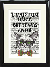 Art Print Vintage Dictionary Book Page Cat Moggy Had Fun Once