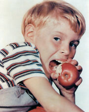 JAY NORTH DENNIS THE MENACE EATING APPLE TV SHOW PHOTO OR POSTER