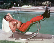 ROBERT MITCHUM BARECHESTED BEEFCAKE COLOR PHOTO OR POSTER