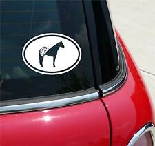 APPALOOSA HORSE HORSES GRAPHIC DECAL STICKER ART CAR WALL DECOR  EURO OVAL