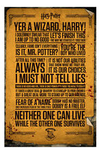 Harry Potter Quotes Poster New - Maxi Size 36 x 24 Inch