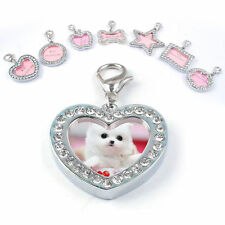 Unique Crystal Puppy Pet Dog Cat ID Name Tag Rhinestone Chic Pet ID Tags Tools