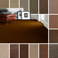 Brown Carpet, Cheap Brown Carpets, Twist & Saxony Pile Brown Carpets Action Back