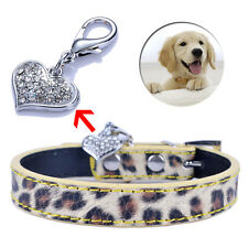Lovely Heart Jewelry Leopard Leather Dog Collar With Rhinestones Tag 2Sizes S M