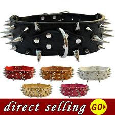 Fashion Spiked Studded Dog Collar Pitbulls Large 2'' Wide Croc Leather PetCollar