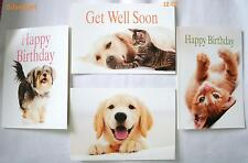Mixed Greeting Cards IFAW, Get Well, Happy Birthday, Thinking of You, Thank You