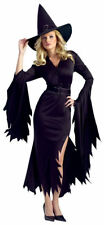 Witch Evil Gothic Sorceress Black Dress Adult Size Womens Halloween Costume