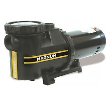 Jacuzzi Magnum In-Ground Single Speed Swimming Pool Pump 115/230V -(Choose HP)