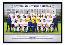 Tottenham Hotspur Team Photo 2017 / 2018 Poster Framed Cork Pin Board With Pins