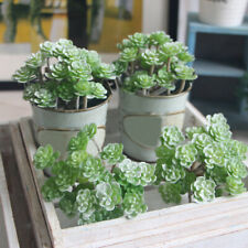 24 Heads Artificial Succulents Plant Garden Micro Green Fake Leaves Home Decor