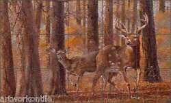 Floor Tile Mural Binks Deer Animals Lodge Art Art 60