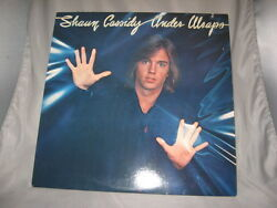 SHAUN CASSIDY Under Wraps 1978 Warner Curb Hard Love Lie To me Our Night Right