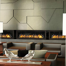 Napoleon Vector 62 LHD62 Linear Gas Fireplace - 50000 BTU's MAKE OFFER